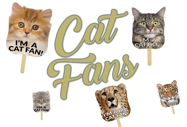 Cat Fans